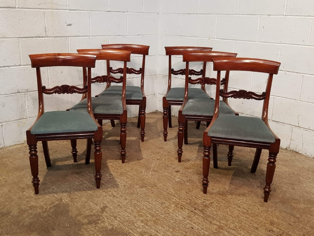 antique set six william 1v mahogany dining chairs c1830